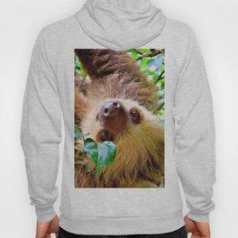 Awesome Sloth Hoody