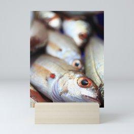 Fresh catch Mini Art Print