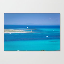 beautiful blue Canvas Print