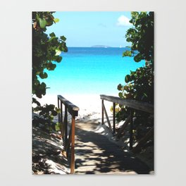 Trunk Bay walkway to beach, St. John Canvas Print