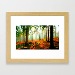 This forest feels like home Framed Art Print