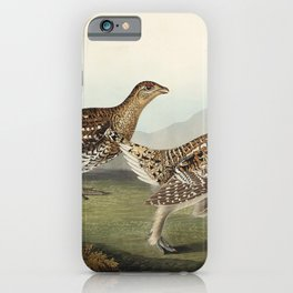 Sharp-tailed Grouse from Birds of America (1827) by John James Audubon etched by William Home Lizars iPhone Case