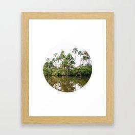 Rainforest Palms over Peruvian Amazon Circle Fine Art Print Framed Art Print