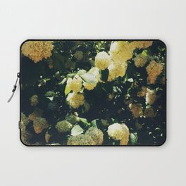 Yellow Snowballs II Laptop Sleeve