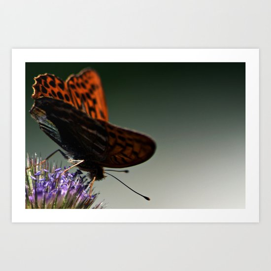 I spread my wings Art Print