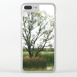 Tree amid reeds Clear iPhone Case