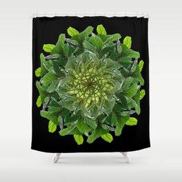 The Fiddlefig Swirl Shower Curtain