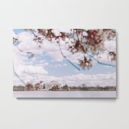 Washington DC Cherry Blossoms - Thomas Jefferson Memorial II Metal Print