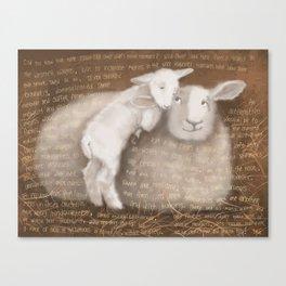 Sheep 1 Canvas Print