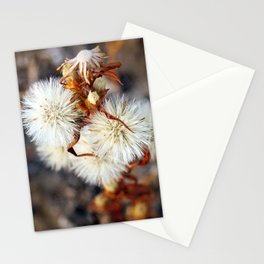 The Mongolian Dandelion Stationery Cards