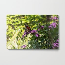 Monarch's Flower Metal Print
