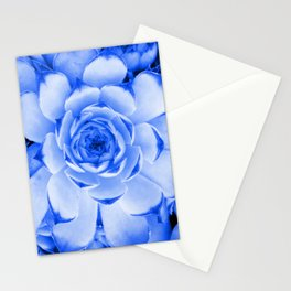 Blue Succulent Tinted Photo Stationery Cards