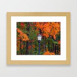 Lamplight in Fall II Framed Art Print
