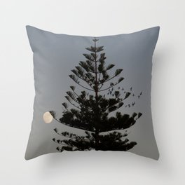 Araucaria tree, full moon, flight of birds Throw Pillow
