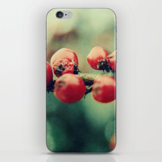 Red Winter Berries iPhone & iPod Skin