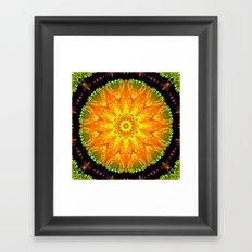 Citrus Slice Kaleidoscope Framed Art Print