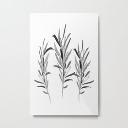 Eucalyptus Branches Black And White Metal Print