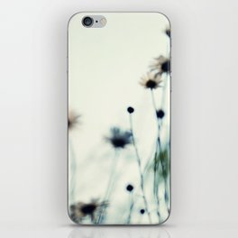 field of daisies iPhone Skin