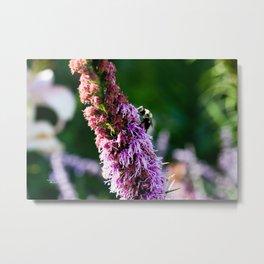 Wildflower and Bee Metal Print
