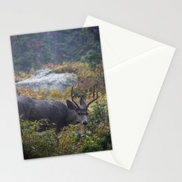 Deer in the Lense Stationery Cards