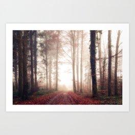 Fairytale Woods III Art Print