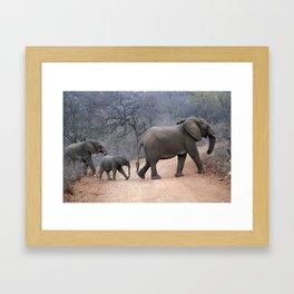 Elephant Family Crossing The Road Framed Art Print
