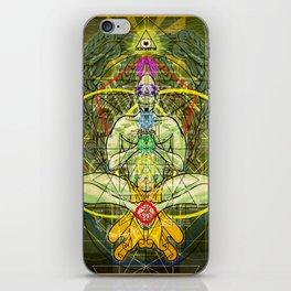 Manifest Destiny iPhone Skin