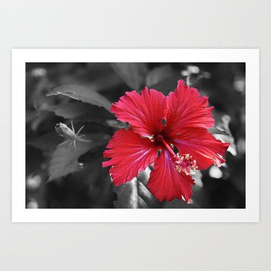 Color my Garden Red Art Print