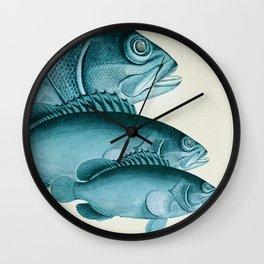 Fish Classic Designs 4 Wall Clock