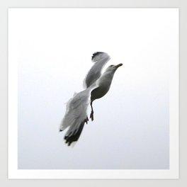 Bird!3 Art Print