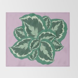 Tropical leaves of calathea Throw Blanket