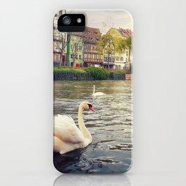 magnificent swans iPhone Case