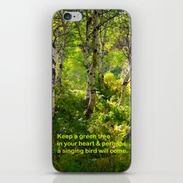 Aspens and Chinese Proverb iPhone Skin