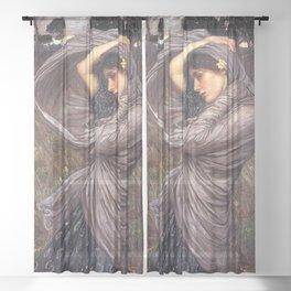 Boreas 1903 Sheer Curtain