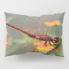 Red Skimmer or Firecracker Dragonfly With Lantana Background Pillow Sham