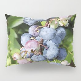 Ready to pick blueberries? Pillow Sham