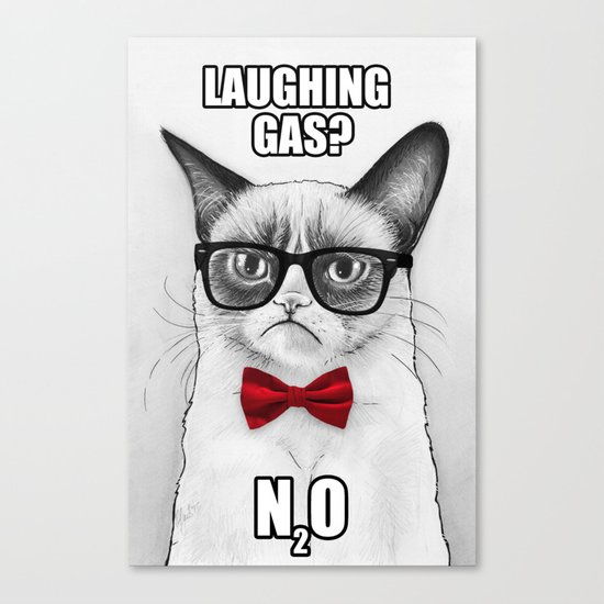 Grumpy Chemistry Cat Geek Science Meme Whimsical Animals in Glasses Canvas Print