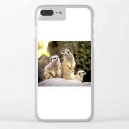 Act Natural Meerkats Clear iPhone Case