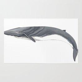 Fin whale Rug