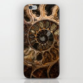 Earth treasures - Fossil in brown tones iPhone Skin