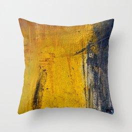 Window Rain Throw Pillow