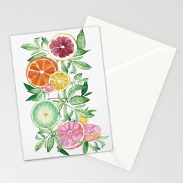 Citrus Fruit Stationery Cards