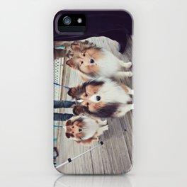 Shelties iPhone Case