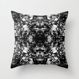 Kaleidoscope1 Throw Pillow