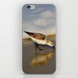 Beach Bird iPhone Skin
