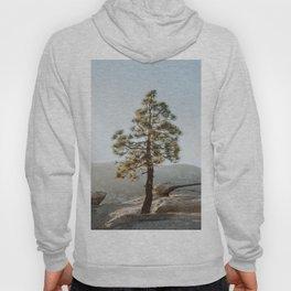 Desert Tree Hoody