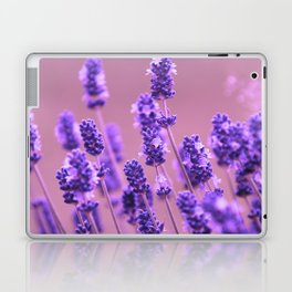 Romantic field Laptop & iPad Skin