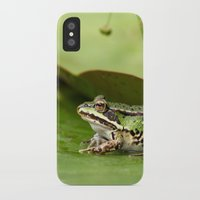 frog iPhone & iPod Cases featuring Frog by Jana Behr