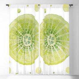 Microscopic: Diatoms - Green Palette Blackout Curtain