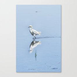 Strutting Snowy Egret from Chincoteague Canvas Print